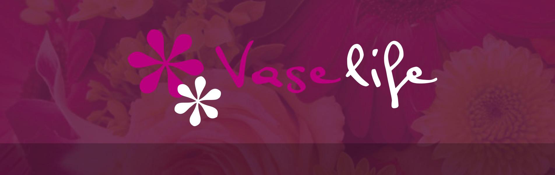 vaselife-logo